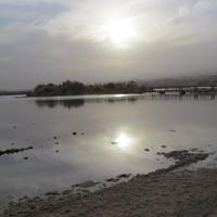 From Eilat to Tel Aviv