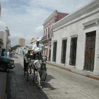 Arrival to Merida, Yucatan