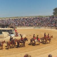 Caesarea, Nahal Mearot, Zichron Yaakov,Tel Megido