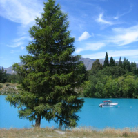 From Christchurch to The Alpine Lakes