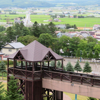 Day trip to Furano