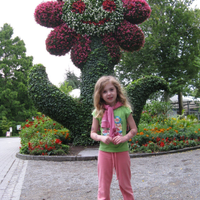 Day trip to Mainau