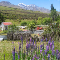 From Queenstown to Glenorchy