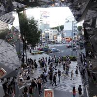 Shibuya,Meiji temple,Omotesando
