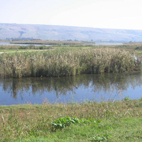 The Upper Galilee