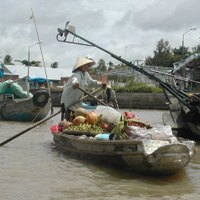From Mekong Delta Back to HCMC