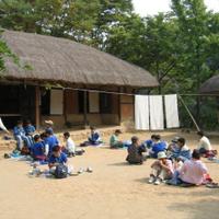 Day trip to the Korean Folk Village and Suwon