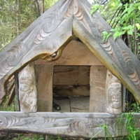 From Kaitaia to Warawara Forest