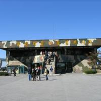 Day trip to DMZ