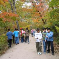 Gayasan National Park and Haeinasa Park