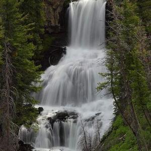 Yellowstone and Grand Teton vacation