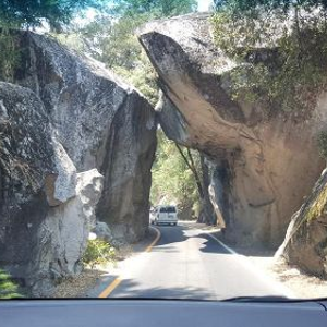 2 day trips to Yosemite Valley