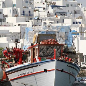 Vacation in Paros Greece